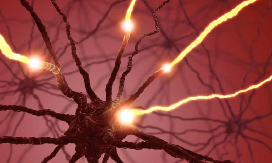 neurons firing in the brain.