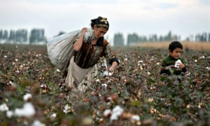A Kyrgyz woman and her son pick cotton in a field near the village of Aravan.
