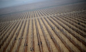 North Korean workers at an apple farm near Pyongyang in 2012.