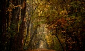 A man walks in a park on a warm day in the centre of Sofia, Bulgarai