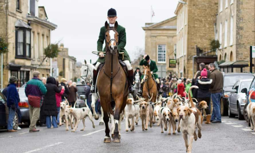 Hunting hounds are led through Chipping Norton, Oxfordshire.