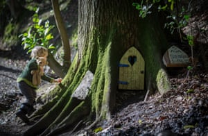 A small boy looks inside a fairy door at the bottom of a tree in Wayford Woods
