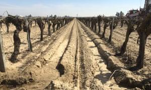 Fresno drought