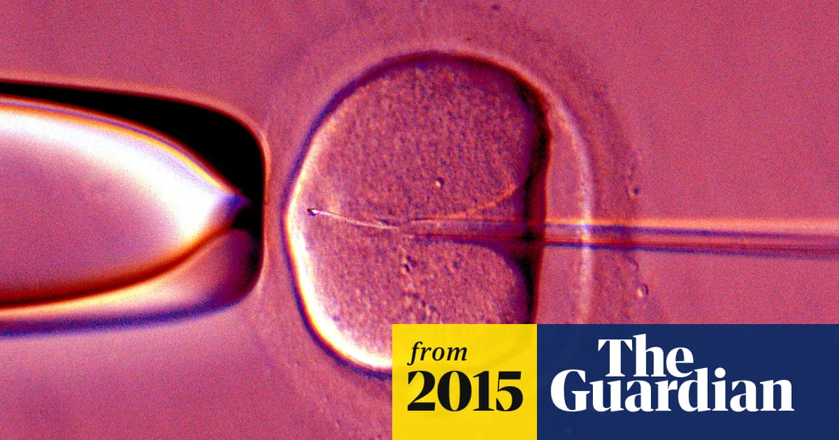 IVF test improves chances of implantation by pinpointing fertility