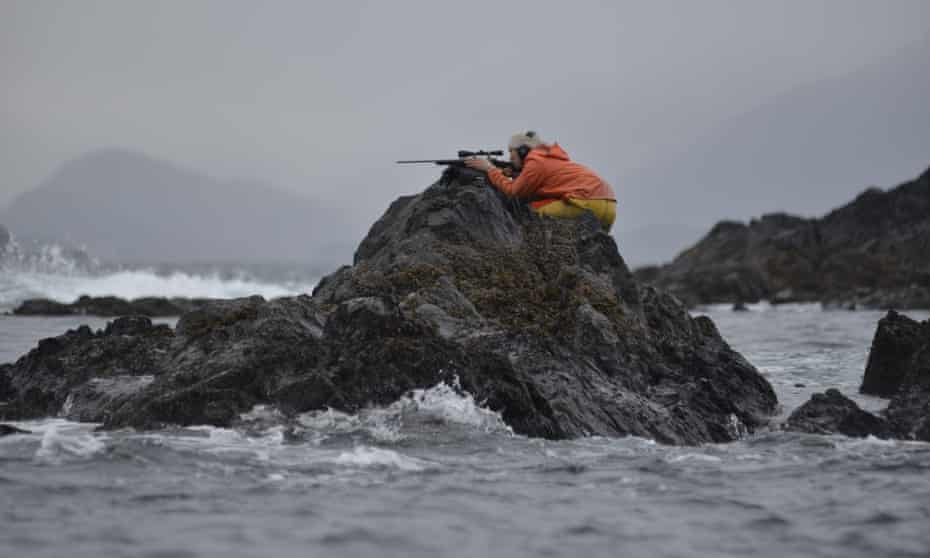 Peter Williams on the hunt for sea otters.