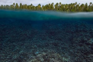 Coral bleaching story : The destruction of coral reefs will make these vital barriers for the land less effective against the effects of climate change - such as sea level rise and storms. Location: Arno atoll, Marshall Island, December 2014