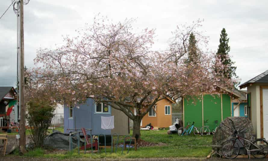 Bloom at Opportunity Village.