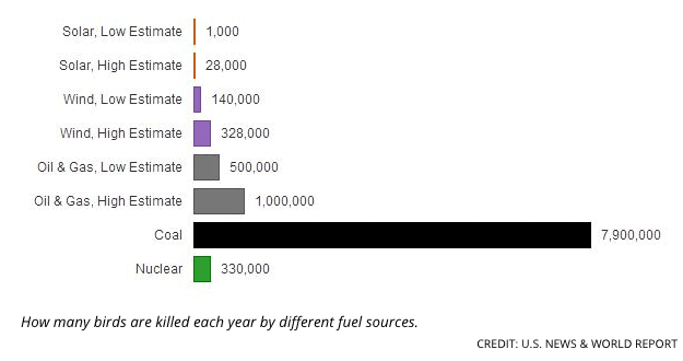 Birds killed annually by different fuel sources