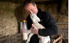 David Cameron needs to display compassion in an election battle