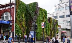 Living wall Edgware Road tube station