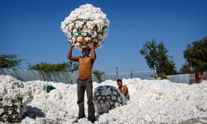 Ikea Makes 75 Of Its Home Furnishings From Sustainable Cotton