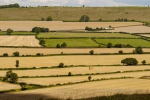 Marquita Townsend Wiltshire patchwork fields