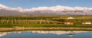 The Vines of Mendoza, Vista Flores, Uco Valley.