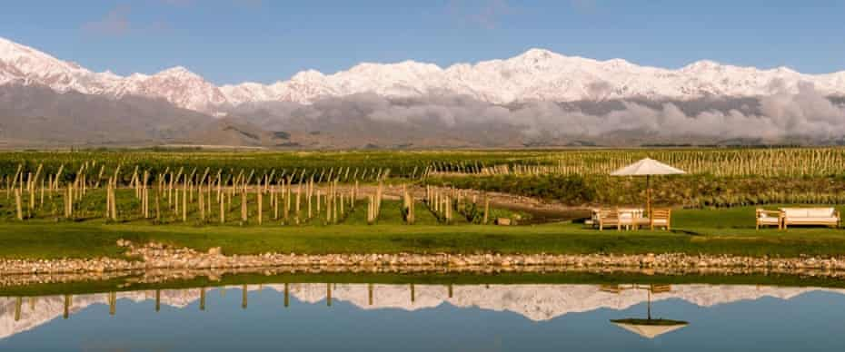 The Vines of Mendoza, Vista Flores, Uco Valley.