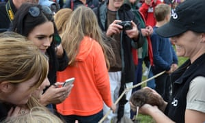 The kiwi was the star at a recent public release on Rotoroa Island. Conservationists are using the island's program as a way of connecting people, including students, to wildlife.