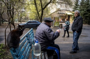Donetsk, Ukraine A cat sits on a bench in the city where a fragile ceasefire between Ukrainian forces and pro-Russian separatists