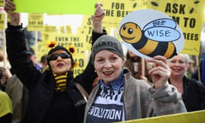 Vivienne Westwood (pictured) supports EU proposals to suspend the use of what she considers to be bee-killing pesticides