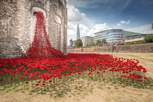 The poppies installation at the Tower of London.
