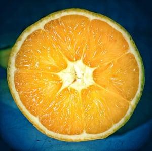 A slice of fresh orange