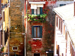 The Contrast Of Fresh And Ancient Colour The colour and freshness of living blooms gives life to the ancient flaking paint seen from the rear window of my hotel room in Venezia