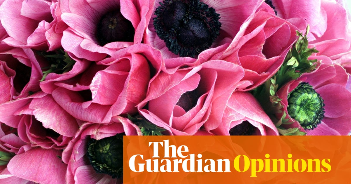I lost my sense of smell – it was hard not to panic | Julie Bindel
