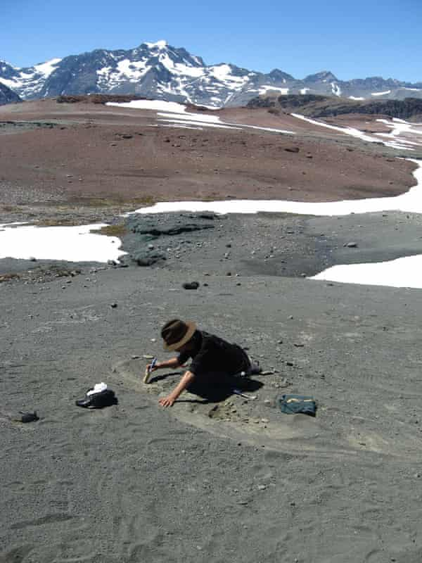 Excavating a Chilesaurus skeleton in beds of the Toqui Formation, Southern Andes, Chile.