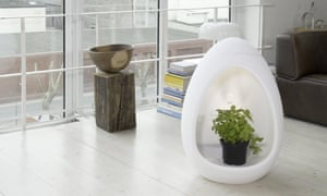 Keep your shrubs in style with DasEgg.