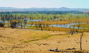 """ARDDNX Hume Dam during dry summer[LakeHume]VictoriaWaterDamDroughtEmpty""""HumeDam""""LowDryReservoirNortheastVictoriaNorth-east""""NorthEast""""AlburyWodongaTallangatta""""HumeWeir""""Summer2007""""ElNino""""BarrenYellowParchedScorchedRiver""""WaterStorage""""FloodedValleyAustraliaTreesDeadEnvironmentHillsNatureLandscape"""
