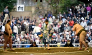 Cherry blossoms petals fly in the air as sumo wrestlers compete.