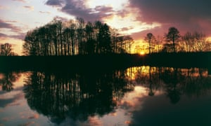A lake at sunset in Bialowieza forest national park, Poland.
