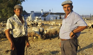 Two farmers tend their animals in the village of Zahara de la Sierra in the province of Cadiz, southern Spain.
