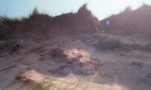 Behind the beach … meols are sands that have been colonised by plants and wildlife
