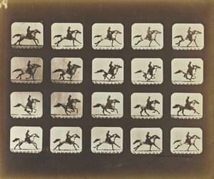 Galloping Horse with Rider in Eadweard J. Muybridge, The Attitudes of Animals in Motion, 1881, Eadweard J. Muybridge, salted paper print