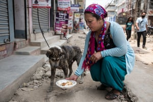 As part of the terva ceremony volunteers put food out for Kathmandu's street dogs.