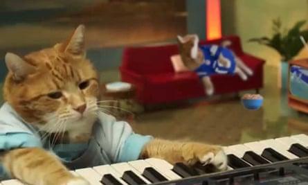 Keyboard Cat.