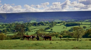 Fern Verrow sits in the stunning foothills of the Black Mountains.