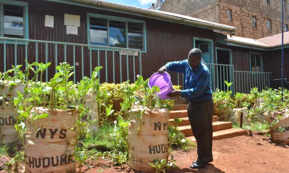 Sack farming in school