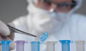 Scientist holding hair for DNA sample.