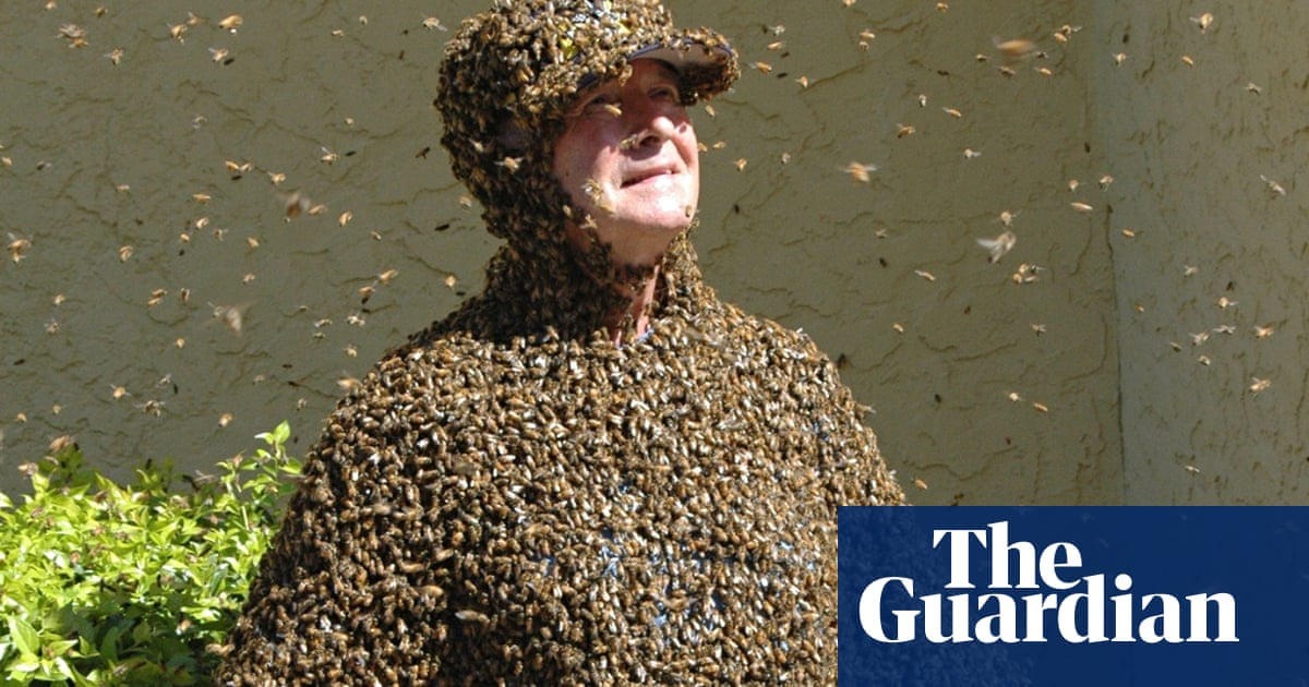 Don't panic! How to escape a swarm of bees | Environment