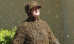 Bee happy, don't panic