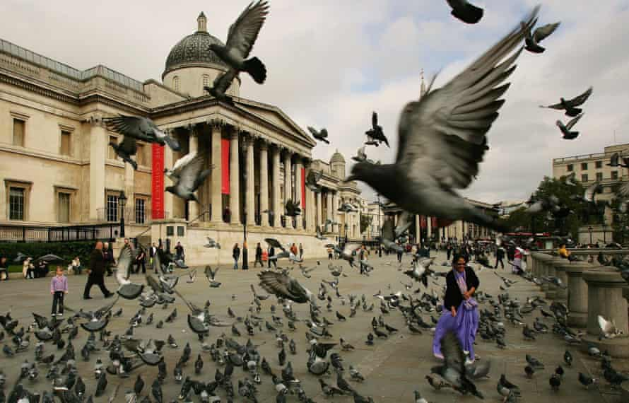 A woman is surrounded by pigeons in Trafalgar Square, London.