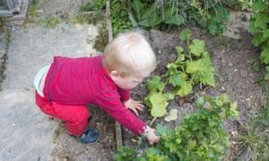 Joshua in the soil alone