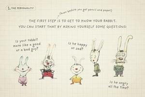 htd a rabbit 2
