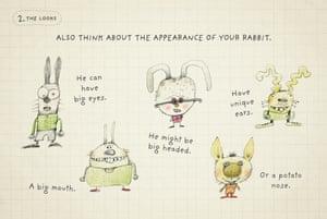 htd a rabbit 4