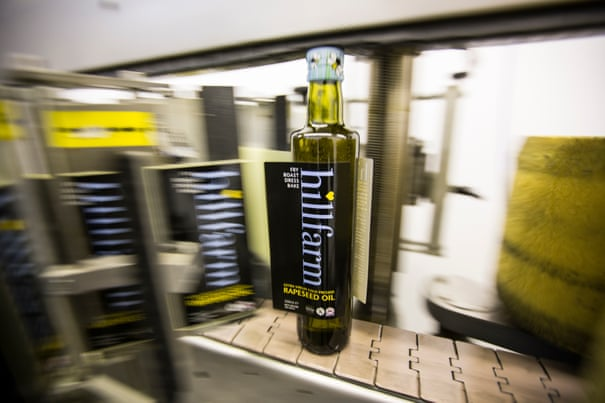 Demand for rapeseed oil turns farmers' fields to gold