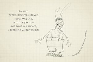 htd a rabbit 11