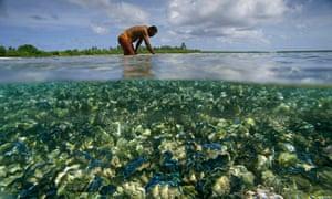 global warming shellfish warning