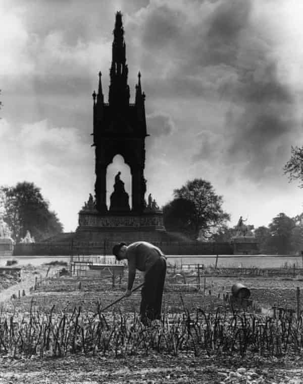 An allotment holder at work on his plot of ground by the Albert Hall Memorial, in Kensington Gardens IN 1942.