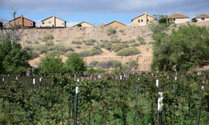 New neighbours in Albuquerque's semi-rural South Valley overlook Lorenzo Candelaria's farm.