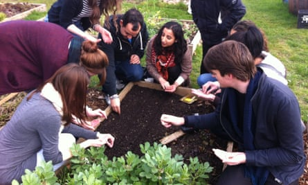 Students learning the basics of seed sowing.
